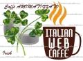 IC Caffè Aroma Irish