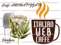 IC Caffè Aroma Sambuca